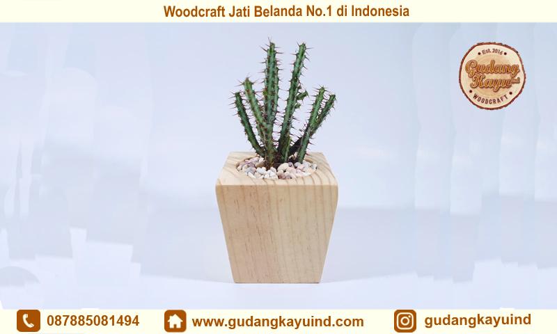 Woodcraft Jati Belanda